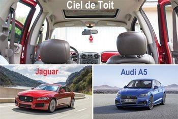 A partir de 298 € au lieu de 460 € le revêtement du ciel de toit de votre voiture Audi A5, Jaguar