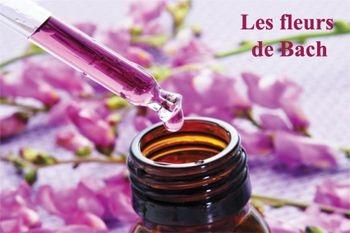 Deals Guadeloupe vous propose à 39€ au lieu de 63€ une séance pour mieux gérer vos émotions et un mieux-être grâce aux fleurs de Bach