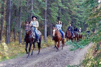 Petit Bourg – Une randonnée à cheval de 3 heures à galoper et se rafraîchir avec votre monture